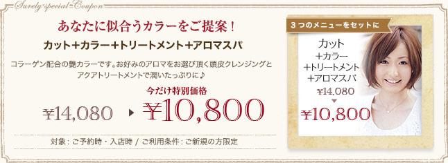 クーポン あなたに似合うカラーをご提案! 今だけ特別価格 ¥10,800