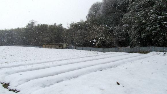 snow03s